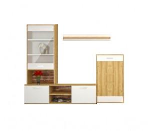 Biblioteca Iva - Mobila Living - Culoare Alb / Stejar - 220x45x177 cm